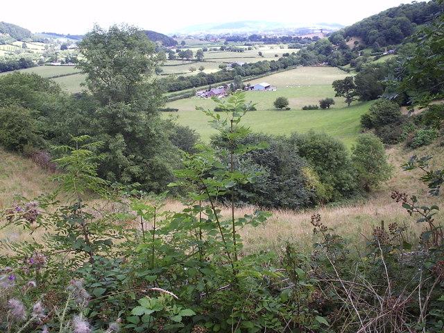 View from Cefnbryntalch