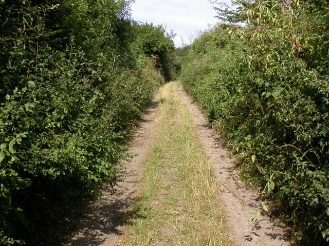 Bridleway North-west of Weston Underwood