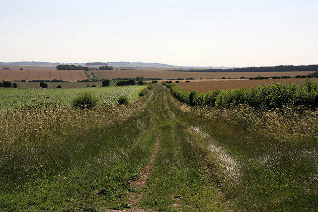 Byway going toward Martin from Whitsbury Down
