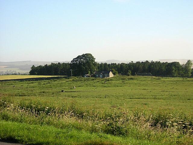 Haughton Pasture