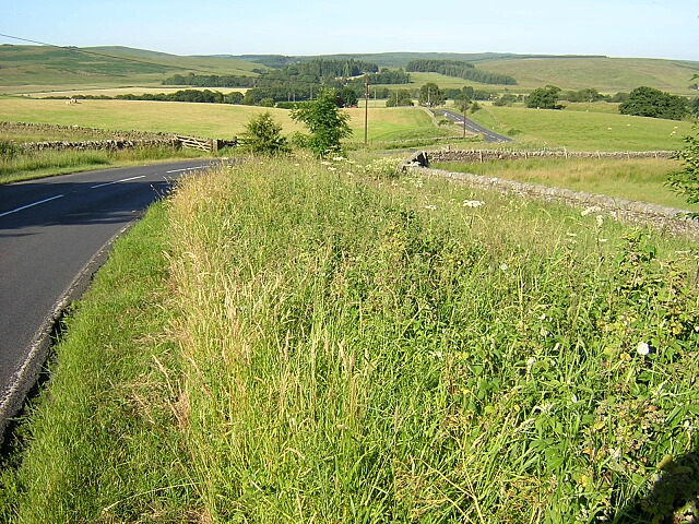 Road Near Lanehead