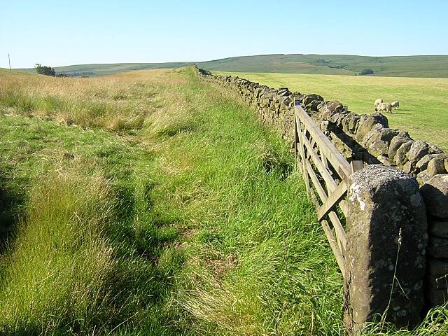 Wall Near Lanehead