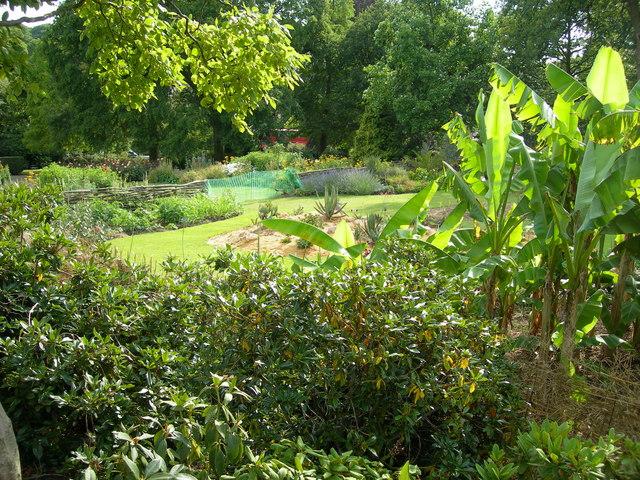 African garden horniman gardens danny p robinson for South african garden designs