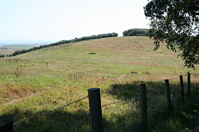 Hilltop Pasture