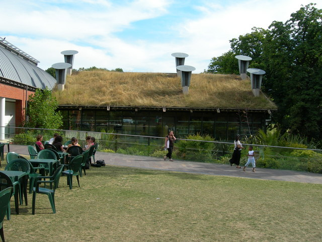 Turf Roof, Horniman Museum