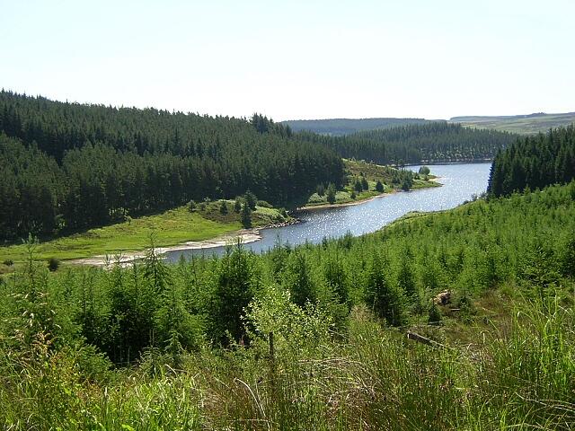 Inlet in Kielder Water