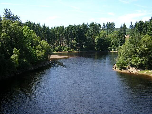 Inlet  in Kielder Water Near Lewis Burn