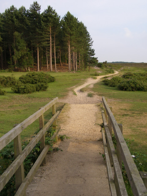 Footbridge and path north of the Dibden Inclosure, New Forest