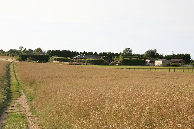 Hunters Chase, nr Greenacres Farm, Coombe Bissett