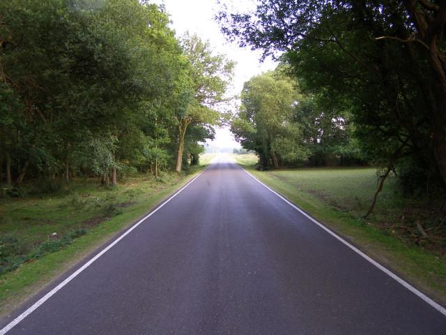 Beaulieu Road at Rushbush, New Forest