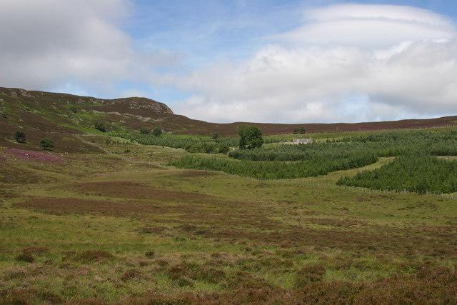 Camlet in Glen Girnock