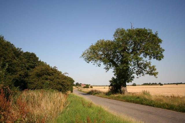Cowdale Lane