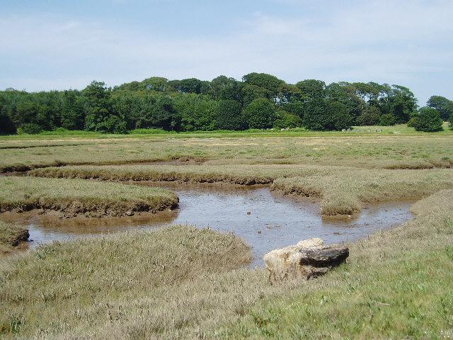 Marshland near Tyninghame
