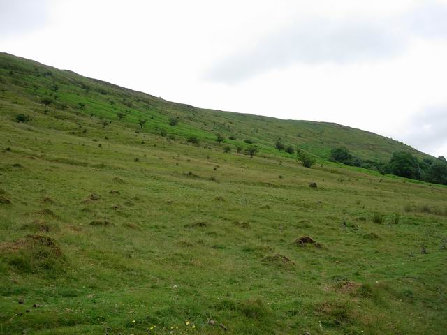 Side of Black Hill