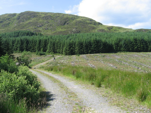 Forest track below Black Craig