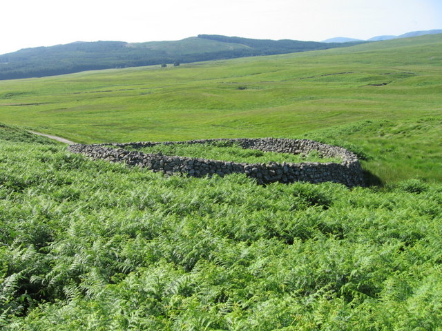 Old sheepfold beside the lead mine track