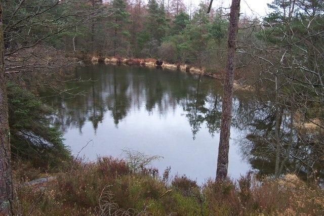 Pool in Gwydr forest