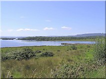 H1163 : Boa Island, County Fermanagh by Kenneth  Allen