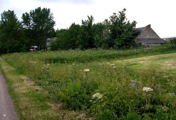 Disused Cottage at Glenurquhart Farm