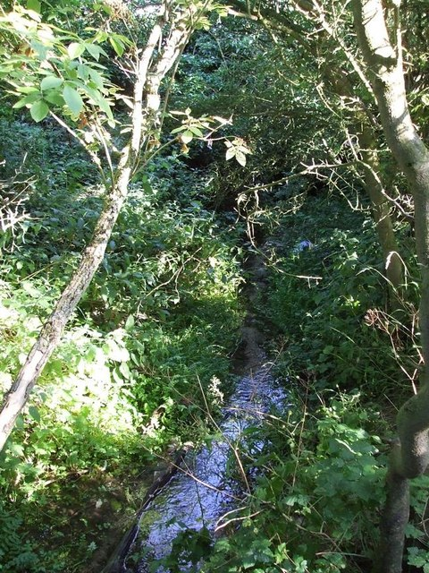 Coombe Bottom - The Stream