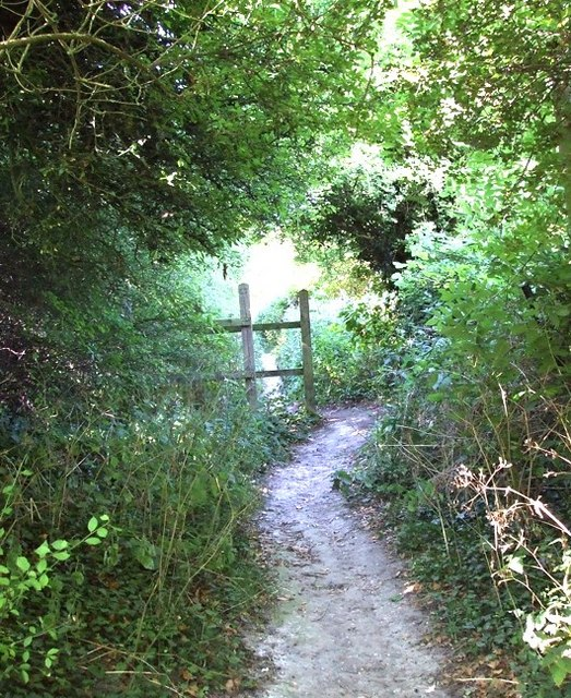 Footpath off Buttercup Lane