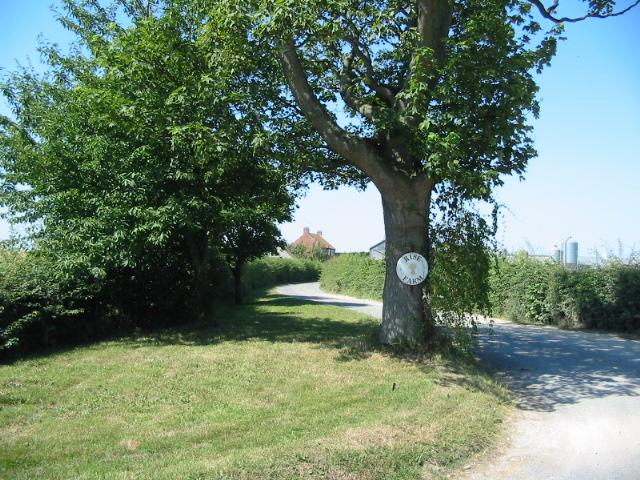 Driveway into Rise Farm