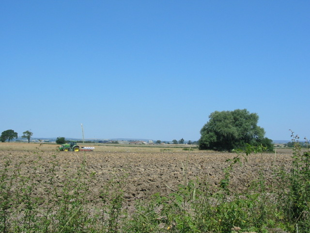 Tractor ploughing in the July heatwave