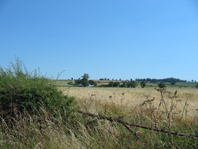 View across agricultural land to Riseborough Hill