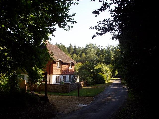 Western edge of Duncton Common