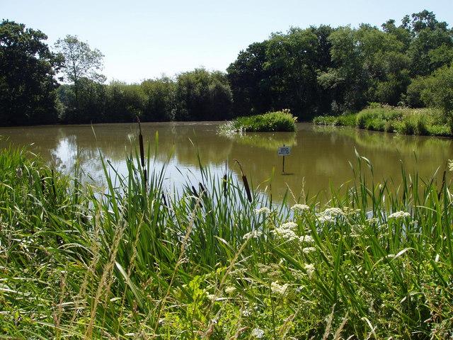Heyshoot Pond