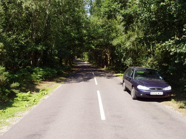 Road through Ambersham Common