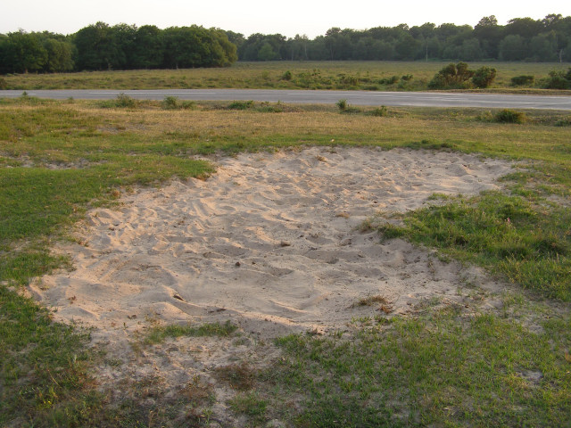 Natural sandpit by the Beaulieu Road, Ipley Cross, New Forest