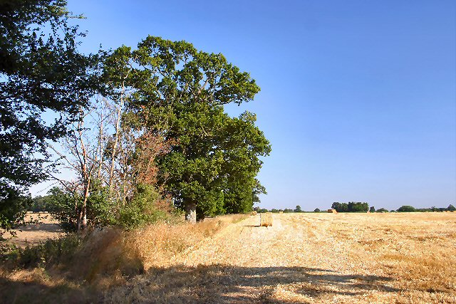 Harvest time at Honington