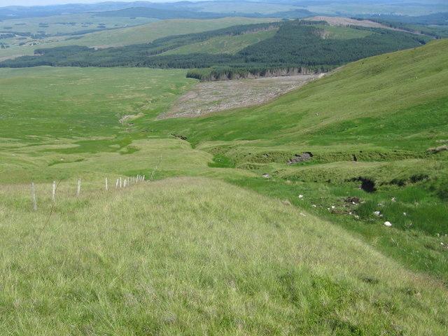 The hillside burns gathering into the Halfmark Burn