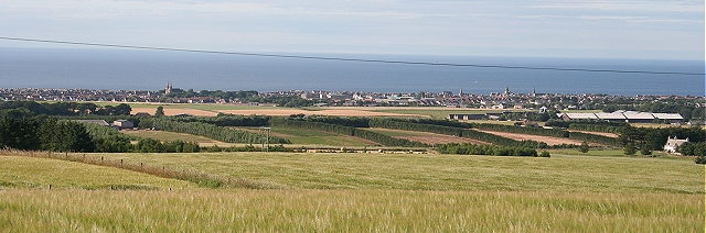 Buckie from Thornybank