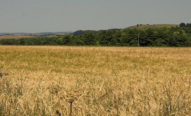 Clarke's Hill Hexton
