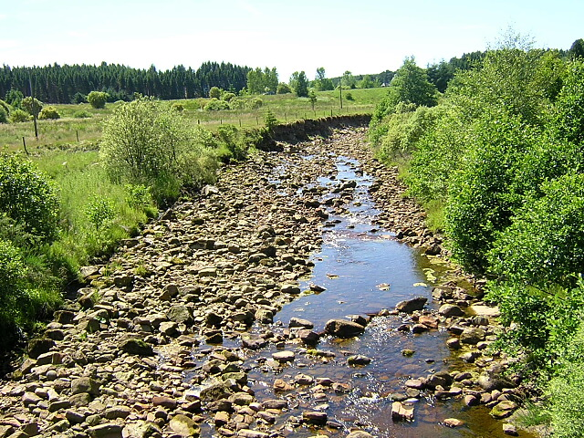 Cranecleugh Burn in Kielder Forest