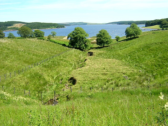 Burn Leading to Kielder Water