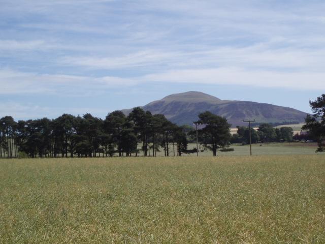 Fields near Butterwell