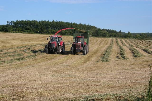 Twenty-first Century Haymaking