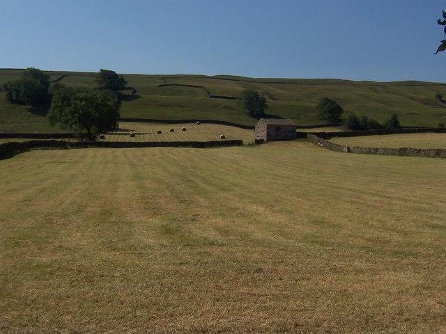 Brough Pasture