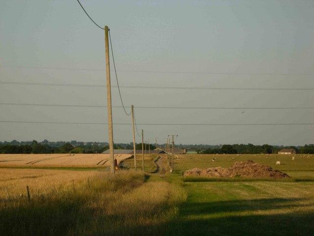 Bridleway to Wibtoft