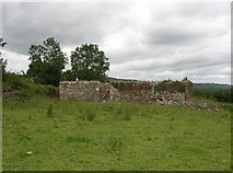 S6131 : Mullenakill ruined church, near Inistioge, Co. Kilkenny by Humphrey Bolton