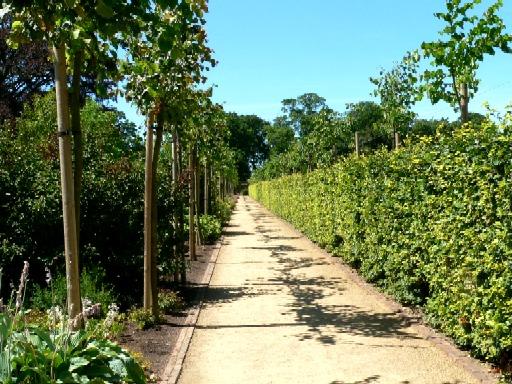 Plantsman's Walk