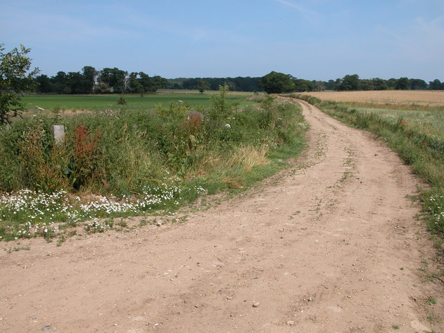 Farm track on the boundary of Felbrigg Park