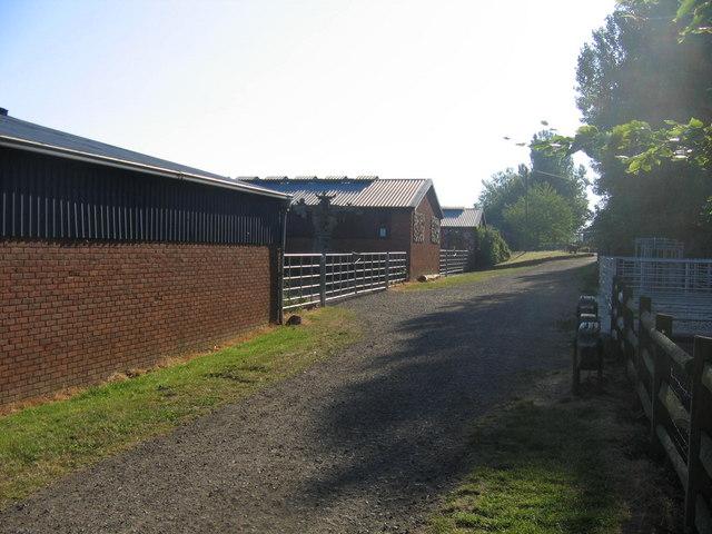 Bill Quay Farm