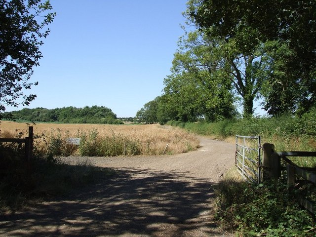 Track to Watergate Farm