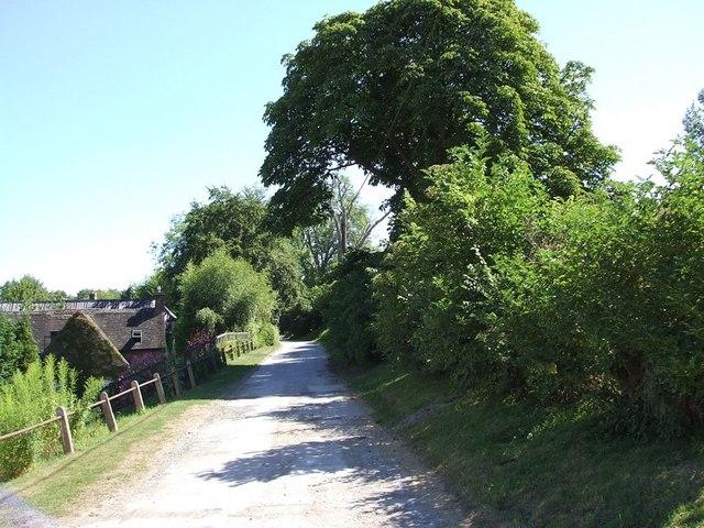 Lane through Sewell