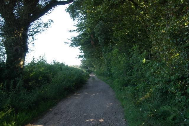 East Devon Way, near White Cross, Ottery St Mary