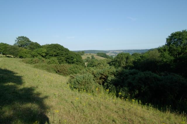 Bald Hill, near Ottery St Mary